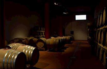 Etna & Wine